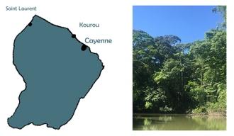 La Guyane, une terre française en Amérique